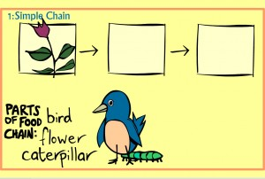 Food Chain: Smartboard Lesson